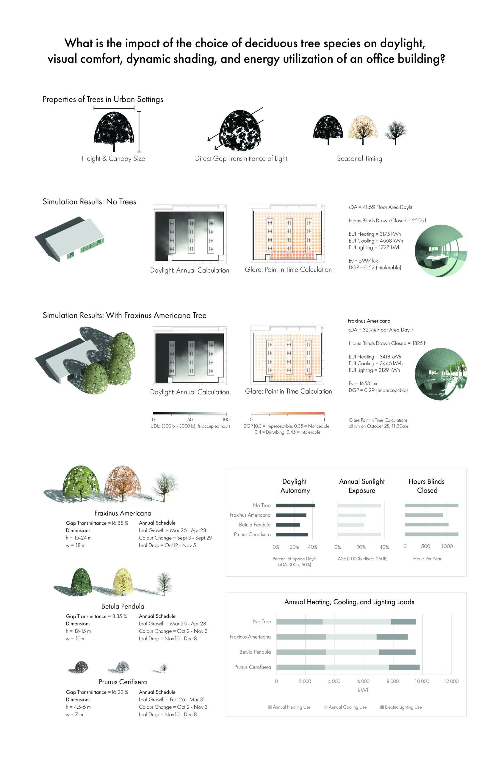 What is the impact of the choice of deciduous tree species on daylight, visual comfort, dynamic shading, and energy utilization of an office building?